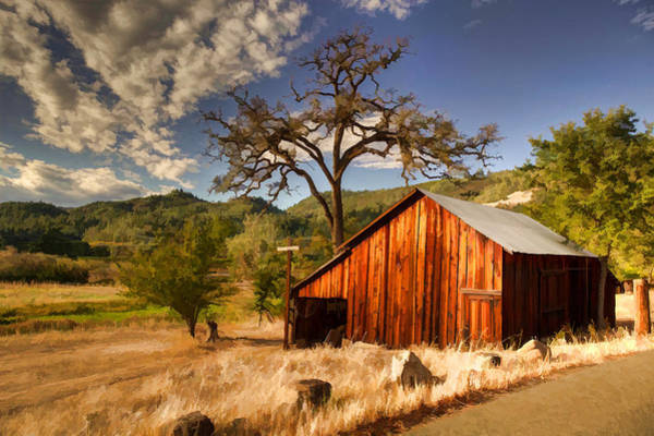 Photograph - Napa Valley Scene by Cliff Wassmann