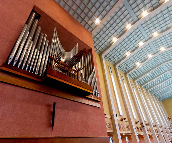 Photograph - Napier Cathedral Organ by Jenny Setchell