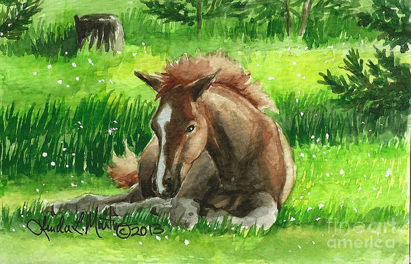 Saving Painting - Napping Alberta Wild Foal by Linda L Martin