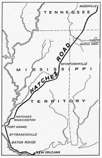 Mississippi River Drawing - Natchez Trace, 1816 by Granger