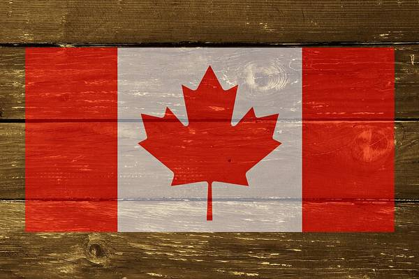 Digital Art - Canada National Flag On Wood by Movie Poster Prints