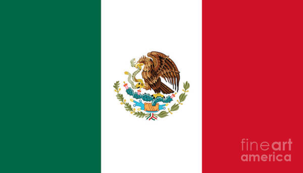 Wall Art - Digital Art - National Flag Of Mexico Authentic Scale And Color Version by Bruce Stanfield