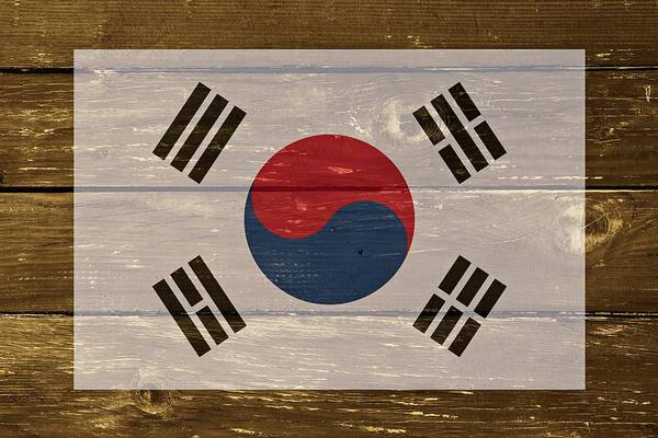 South Beach Digital Art - South Korea National Flag On Wood by Movie Poster Prints