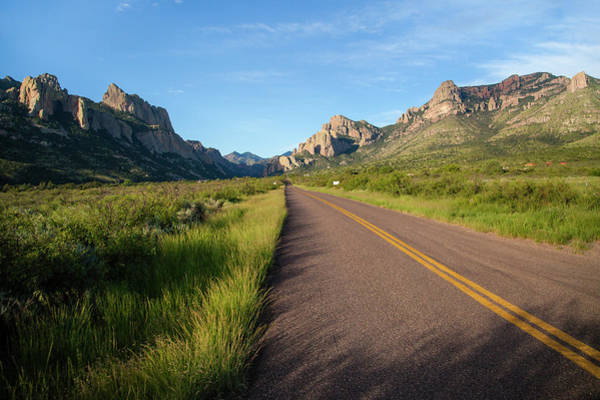Coronado National Forest Photograph - National Forest Road by Larry Ditto