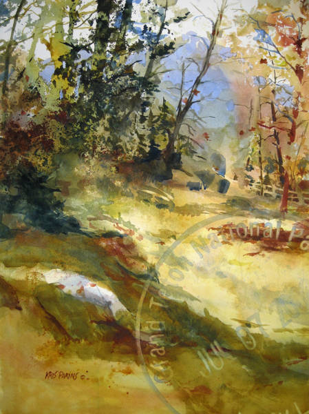 Conservation Painting - National Park by Kris Parins