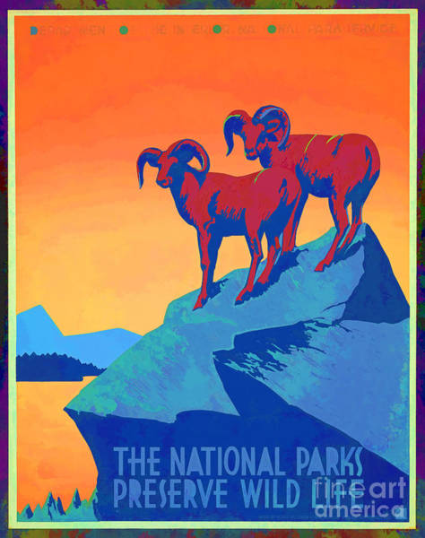 Photograph - National Parks Wild Life Poster by Edward Fielding