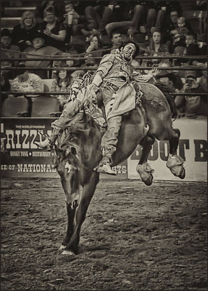 Prca Wall Art - Photograph - National Stock Show Bare Back Action by Priscilla Burgers