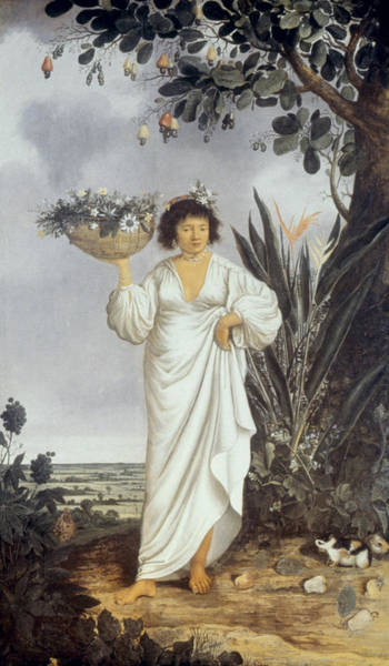 Latina Painting - Native Indian Woman Of Brazil by Granger