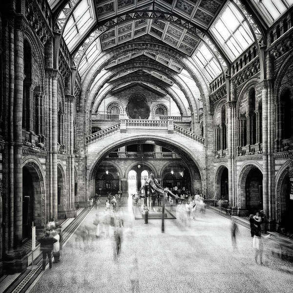 Natural Photograph - Natural History Museum Of London by Santiago Pascual Buye