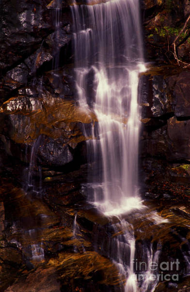 Photograph - Natural Shower by Paul W Faust -  Impressions of Light