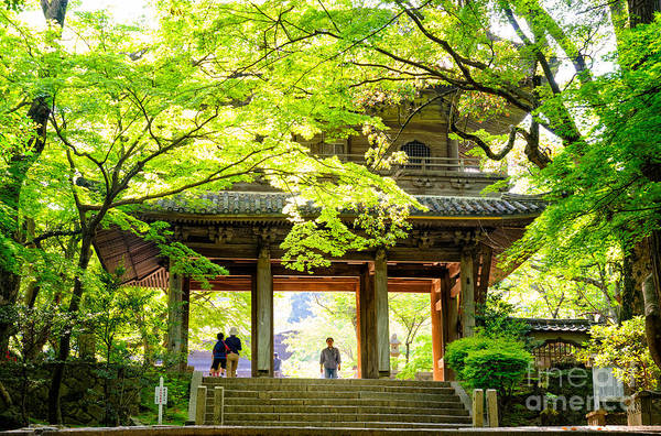 Photograph - Natural Zen - Inner Gateway Of A Japanese Forest Temple by David Hill