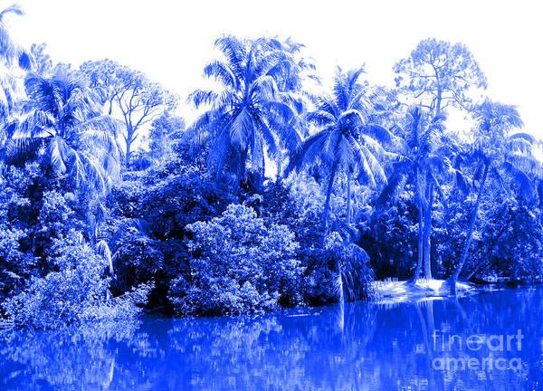 Photograph - Nature 10 Blue . Collection by Oksana Semenchenko