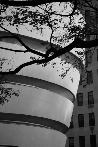 Photograph - Nature And Architecture In Black And White by Rob Hans