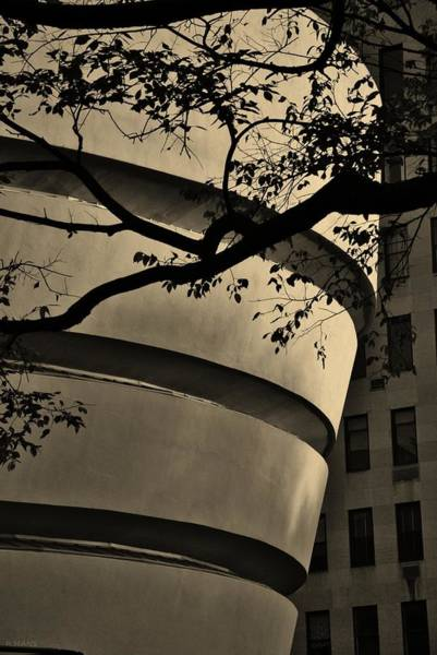 Photograph - Nature And Architecture In Sepia by Rob Hans