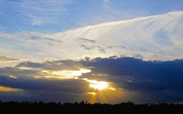 Disappearance Photograph - Nature Park Sunset by Joe Wyman