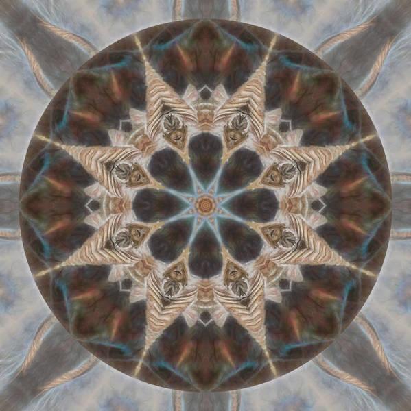 Digital Art - Nature Speaks Mandala  by Beth Sawickie