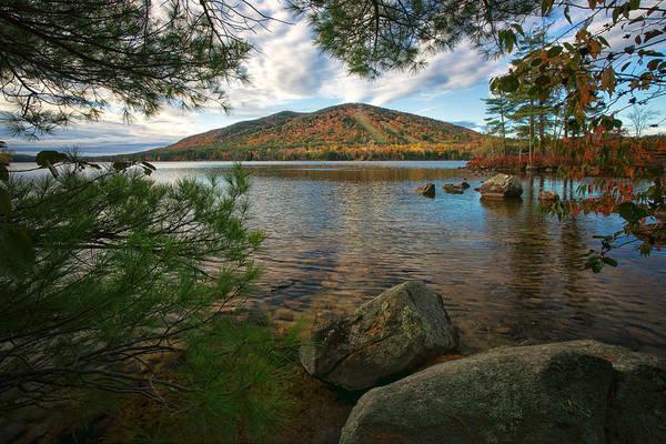 Photograph - Nature's Fall Window by Darylann Leonard Photography