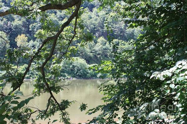Between The Trees Photograph - Nature's Frame Of The Delaware Water Gap by John Telfer