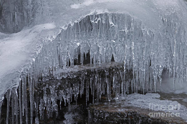 Wall Art - Photograph - Natures Frozen Cathedral Sculpture by John Stephens