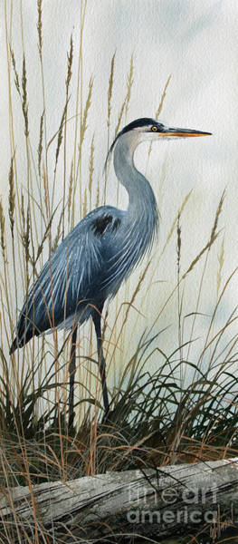 Great Blue Heron Wall Art - Painting - Natures Gentle Stillness by James Williamson