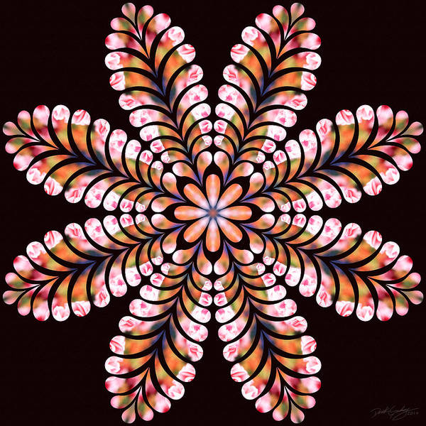 Digital Art - Nature's Mandala 03 by Derek Gedney