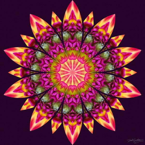 Digital Art - Nature's Mandala 16 by Derek Gedney