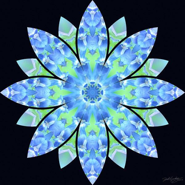 Digital Art - Nature's Mandala 17 by Derek Gedney