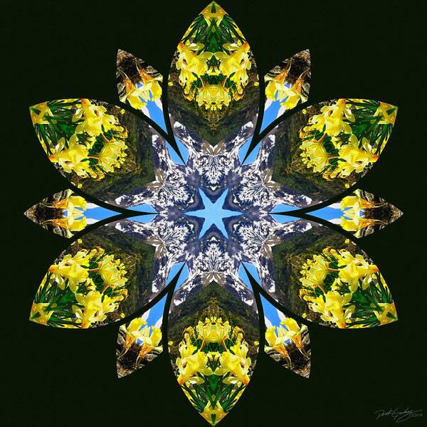 Digital Art - Nature's Mandala 18 by Derek Gedney