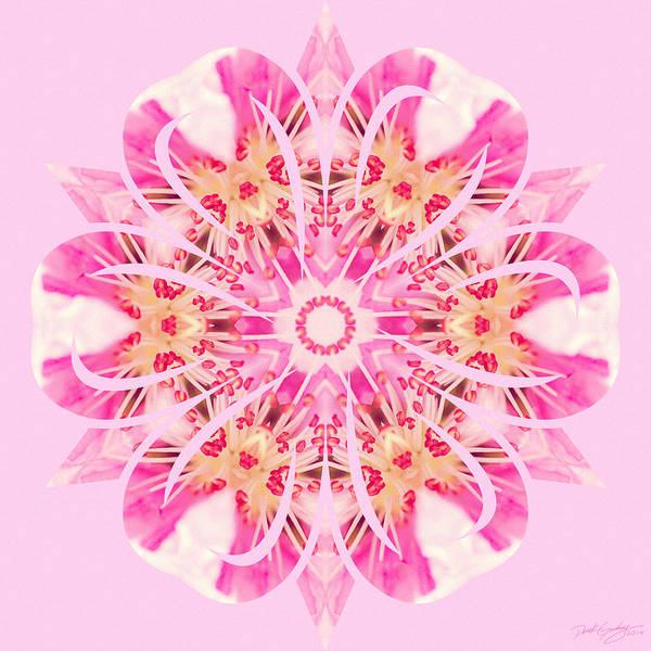 Digital Art - Nature's Mandala 21 by Derek Gedney