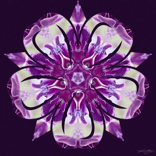 Digital Art - Nature's Mandala 22 by Derek Gedney