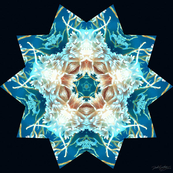 Digital Art - Nature's Mandala 28 by Derek Gedney