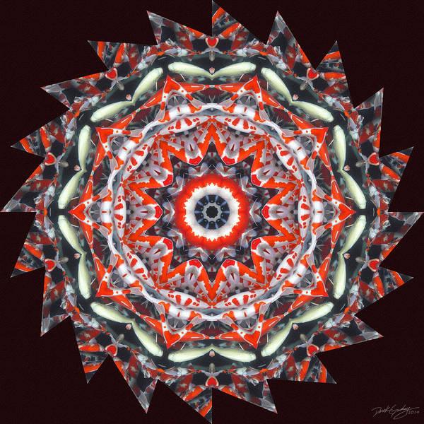 Digital Art - Nature's Mandala 31 by Derek Gedney