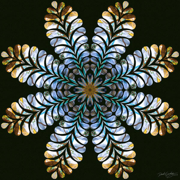 Digital Art - Nature's Mandala 43 by Derek Gedney