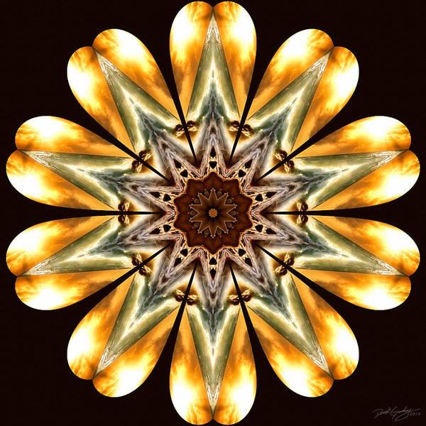 Digital Art - Nature's Mandala 53 by Derek Gedney