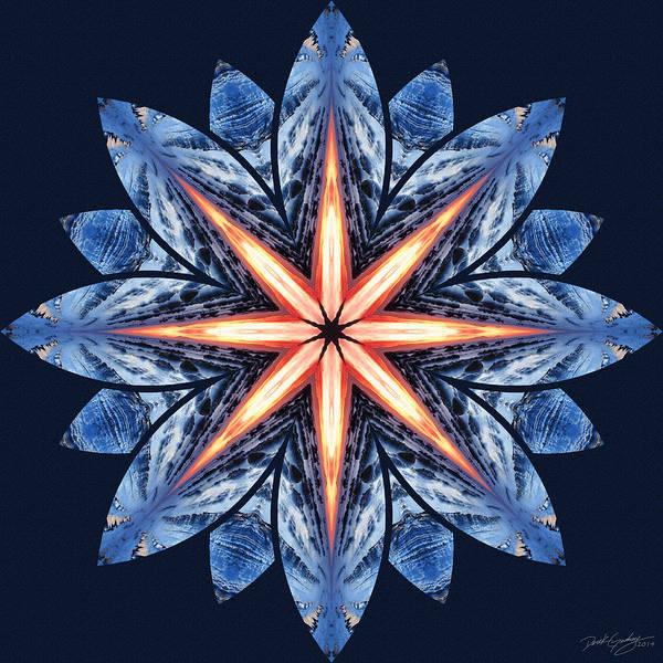 Digital Art - Nature's Mandala 56 by Derek Gedney
