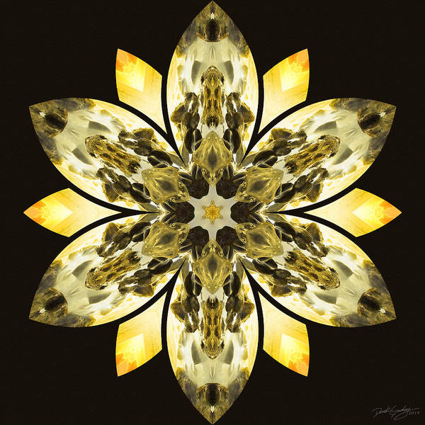 Digital Art - Nature's Mandala 57 by Derek Gedney