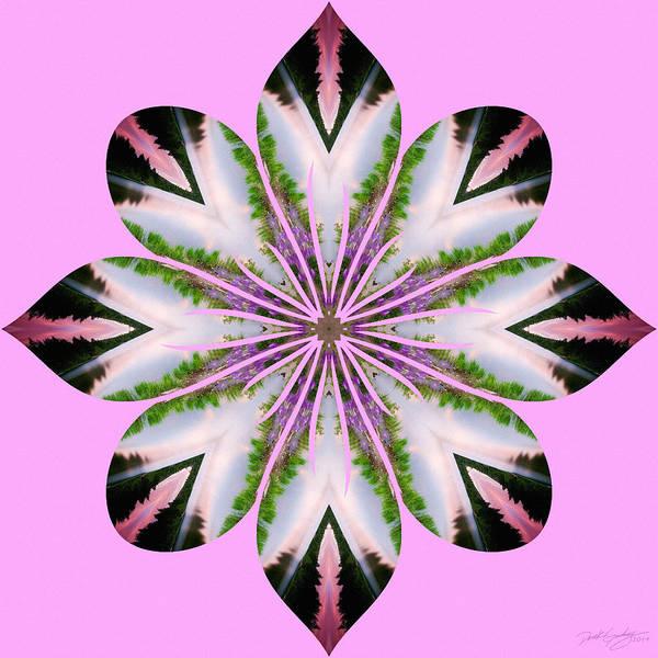 Digital Art - Nature's Mandala 58 by Derek Gedney