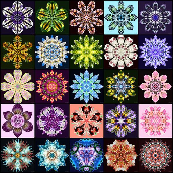 Digital Art - Nature's Mandala Page 01 by Derek Gedney