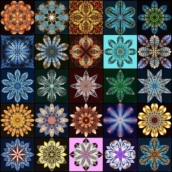 Digital Art - Nature's Mandala Page 02 by Derek Gedney