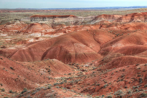 Painted Desert Photograph - Natures Paint by Donna Kennedy