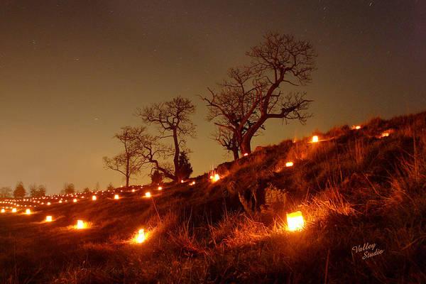 Luminaries Photograph - Nature's Sentinels 12 by Judi Quelland