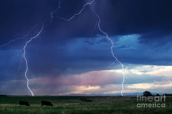 Photograph - Nature's Thunder by Cindy Singleton