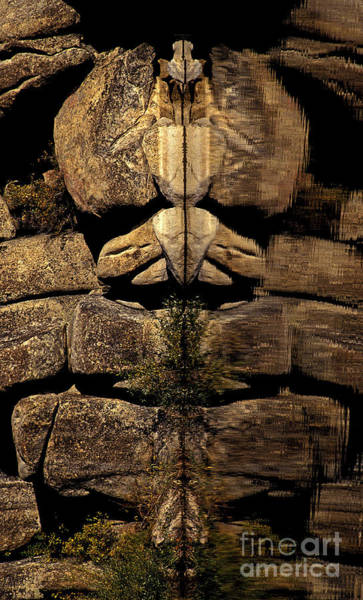 Photograph - Natures Totem by Paul W Faust -  Impressions of Light
