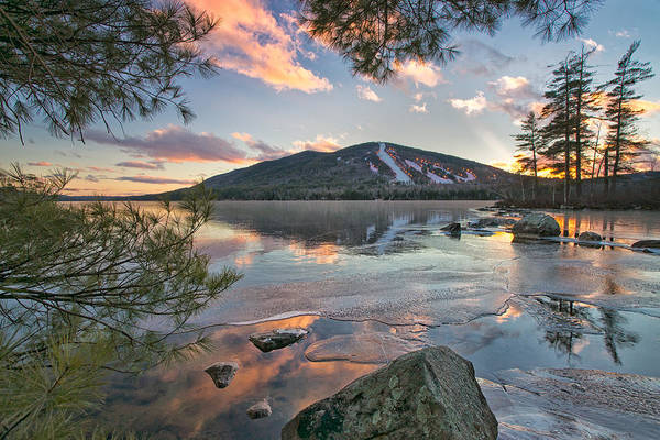 Photograph - Nature's Window by Darylann Leonard Photography