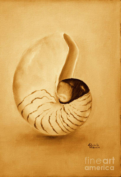 Wall Art - Painting - Nautilus Sea Shell by Gabriela Valencia