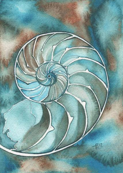 Wall Art - Painting - Nautilus by Tamara Phillips