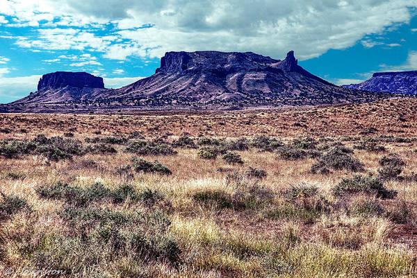Digital Art - Navajo Reservation Series 1 by Bob and Nadine Johnston