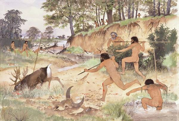 Wall Art - Photograph - Neanderthal Group Hunting by Natural History Museum, London/science Photo Library