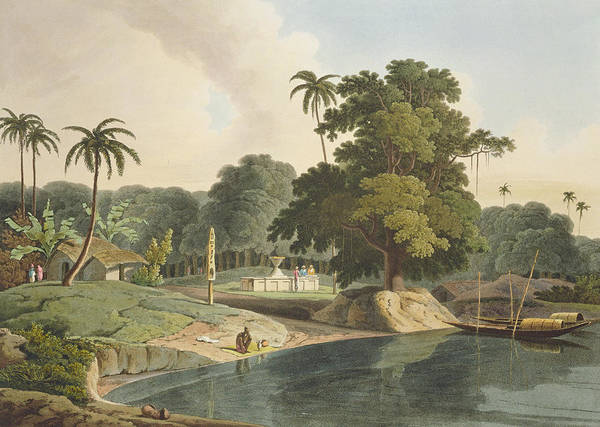 Palm Trees Drawing - Near Bandell On The River Hoogly, Plate by Thomas & William Daniell