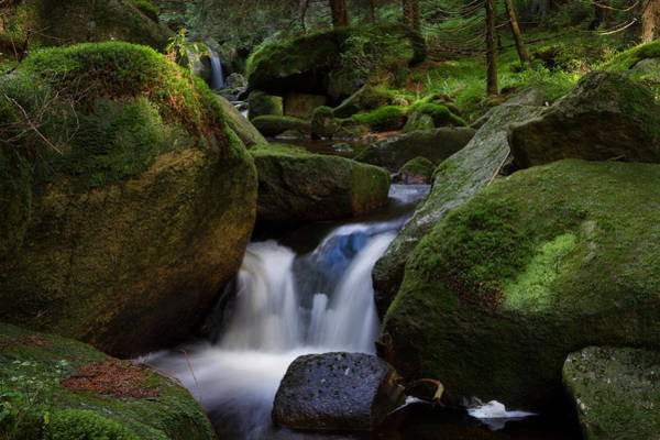 Photograph - near the Brocken, Harz by Andreas Levi